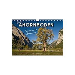 Großer Ahornboden - Europas großer Ahornwald (Wandkalender 2021 DIN A4 quer)