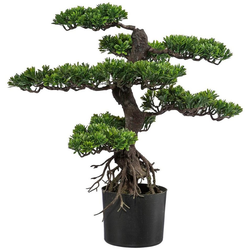 Kunstbonsai Bonsai Bonsai, Creativ green, Höhe 75 cm