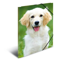 HERMA 7139 3x Sammelmappe A4 PP - Hunde