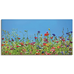 Artland Wandbild Blumenwiese II, Blumenwiese (1 Stück) 150 cm x 75 cm