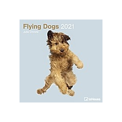 Flying Dogs 2021