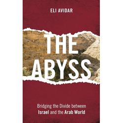 The Abyss als Buch von Eli Avidar
