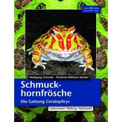 Schmuckhornfrösche als Buch von Friedrich Wilhelm Henkel/ Wolfgang Schmidt