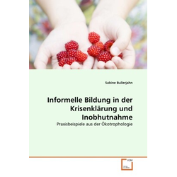 Informelle Bildung in der Krisenklärung und Inobhutnahme als Buch von Sabine Bullerjahn