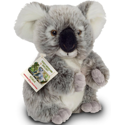 Teddy Hermann® Kuscheltier Teddy-Hermann erklärt…, Koala, 21 cm