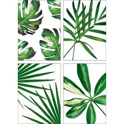 Artland Poster Blätter, Blätter (4 Stück) 21 cm x 29,7 cm