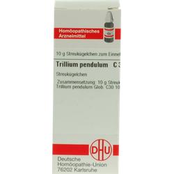 TRILLIUM PENDULUM C 30 Globuli 10 g
