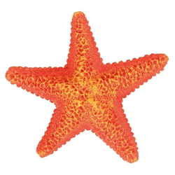 TRIXIE Aquariendeko Seestern