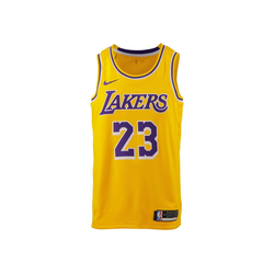 Nike Trikot James LeBron Los Angeles Lakers S
