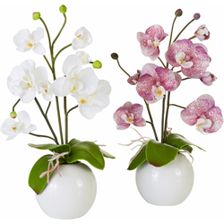 Kunstpflanze Orchidee Orchidee, I.GE.A., Höhe 35 cm