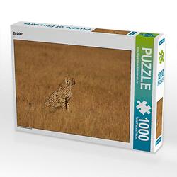 Brüder Lege-Größe 64 x 48 cm Foto-Puzzle Bild von Torsten Antoniewski Puzzle