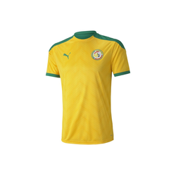 PUMA T-Shirt Senegal Herren Stadium Trikot M