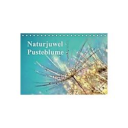 Naturjuwel Pusteblume (Tischkalender 2021 DIN A5 quer)