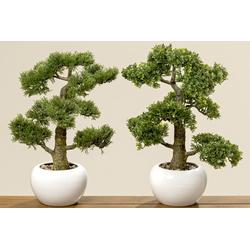Kunstpflanze BONSAI (H 48 cm)