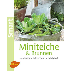 Miniteiche und Brunnen als Buch von Andrea Christmann