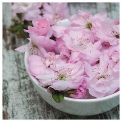 Linoows Papierserviette 20 Servietten Ostern, Japanische Kirschblüten,, Motiv Ostern, Japanische Kirschblüten, Sakura Blüten
