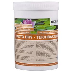 Teichpoint 500g Bakto Dry Teich - Billionen von Mikro-Organismen, Filterbakterien für Ihren Koiteich, hilft gegen Schwegealgen