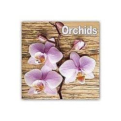 Orchids - Orchideen 2021