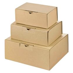 Warenpost Versandkarton - 3 Grössen - TESTSET