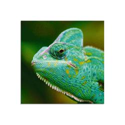 Artland Glasbild Jemenchamäleon Portrait, Reptilien (1 Stück) 20 cm x 20 cm x 1,1 cm