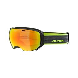 Alpina Skibrille Big horn QVM