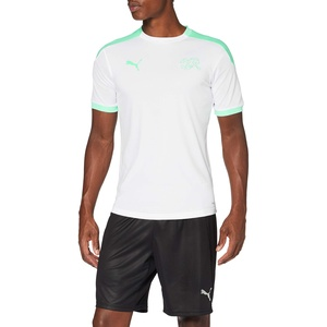 PUMA Herren SFV Training Jersey T-Shirt, White-Green Glimmer, 3XL