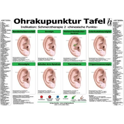Ohrakupunktur Tafel - Indikation: Schmerztherapie 2