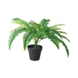 Kunstpflanze Farn im Topf, H ca. 50cm, Tawo