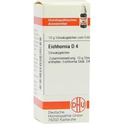 EICHHORNIA D 4