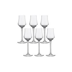LEONARDO Grappaglas Grappa Glas 6er-Set Ciao+, Glas