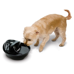 Pioneer Pet Trinkbrunnen Rain Drop Style aus Keramik für Hunde