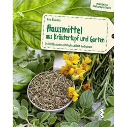 Hausmittel aus Kräutertopf und Garten als Buch von Eva Fauma