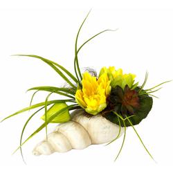Kunstpflanze Gesteck Seerose in Muschel Seerose, I.GE.A., Höhe 20 cm gelb