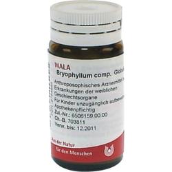BRYOPHYLLUM COMP.Globuli