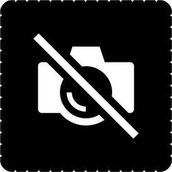 Busch-Jaeger Piktogramm Fotografieren 2144/48-19