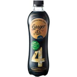 My Sodapop Getränke-Sirup Bar Essence - Ginger Ale