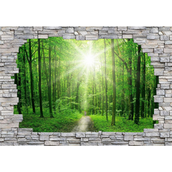 Fototapete 3D Sunny Forest Mauer