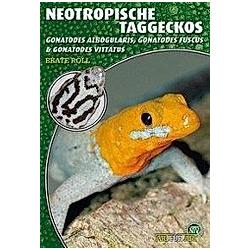 Neotropische Taggeckos. Beate Röll  - Buch