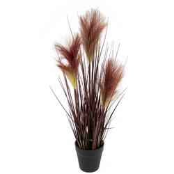 Kunstpflanze Pampasgras, I.GE.A., Höhe 49 cm, Im Topf