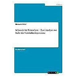Schwule im Fernsehen - Eine Analyse aus Sicht der Verstärkerhypothese. Manuela Pelzl  - Buch