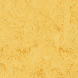 KWG Linoleum-Fertigparkett Picolino zitrone