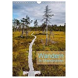 Wandern - In Skandinavien (Wandkalender 2021 DIN A4 hoch)