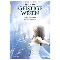 Geistige Wesen. Stefan Brönnle  - Buch