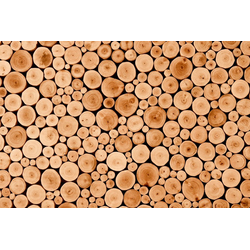 Fototapete Round Teak Wood, glatt 3,50 m x 2,60 m