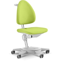 moll Funktionsmöbel GmbH Maximo grün/grau