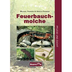 Feuerbauchmolche als Buch von Ursula Franzen