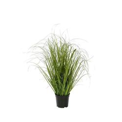 Posiwio Blumentopf Kunstpflanze GRAS aus Kunststoff künstliche Gräser Floristenqualität H63cm
