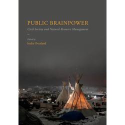 Public Brainpower als Buch von