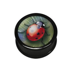 Wildcat Plug Plug Icon Ladybird