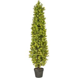 Kunstpflanze Buchsbaumpyramide Buchsbaum, Creativ green, Höhe 120 cm, im Kunststofftopf Ø 38 cm x 120 cm